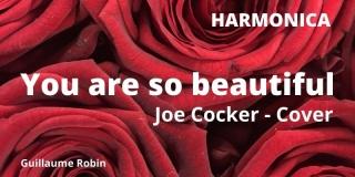 Reprise de You are so beautiful par Guillaume Robin, harmoniciste de Cholet